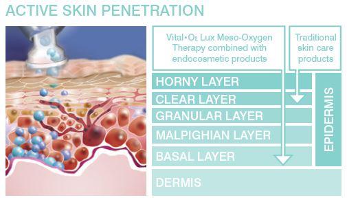 skin-penetration.jpg